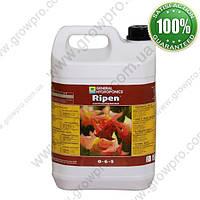 Минеральное удобрение GHE Ripen 5L