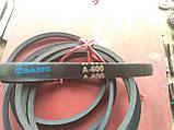 Приводний клиновий ремінь А-600 Basis, 600 мм, фото 3
