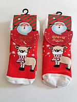 Теплі махрові шкарпетки, 0-12, 12-24 міс, Aura Via (Угорщина)