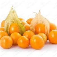 Семена физалиса овощной 0,1 г