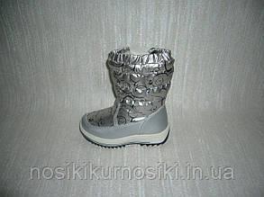 Зимние сапоги для девочек Apawwa, размеры 26 цвет серебро