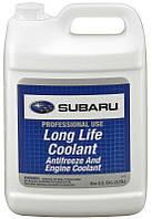Subaru Long Life Coolant (Antifreeze) готовый антифриз, 3,785 л