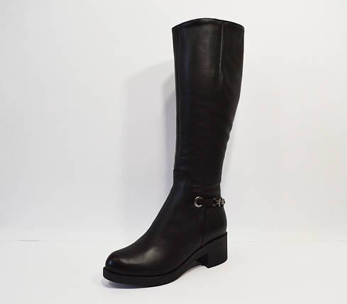 Зимние кожаные сапоги Alpino 2040, фото 2