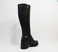 Зимние кожаные сапоги Alpino 2040, фото 3