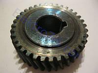 Шестерня для электропилы торцовки Ferm (Ферм), Stern (Штерн), BlauCraft (Блаукрафт); d12, D37.5, h13, z35 лево
