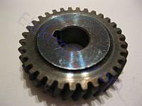 Шестерня для электропилы торцовки Einhell (Энхель) MS202N; d10, D35.5, z33 право