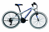 Горный велосипед CARTE 310