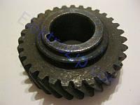 Шестерня для электропилы торцовки Powertec (Повертек) PT 1802; d17, D45, z31 лево