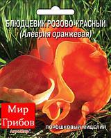 Мицелий сухой порошковый Блюдцевик розово-красный, 10г