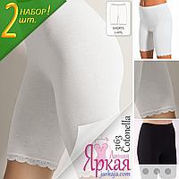 Трусики женские хлопок. Трусы Панталоны набор 2шт. Нижнее белье для женщин больших размеров Cotonella™.