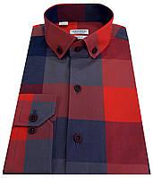 Рубашка мужская в клетку 40-207 V4