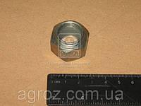 Гайка ступицы передней (пр-во МТЗ) 40-3103017