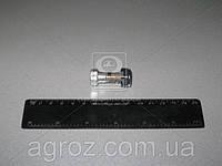 Болт вала карданного с гайкой специальный (покупной МТЗ) 52-2203020
