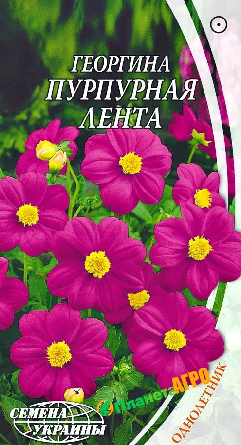 Семена Георгины Пурпурная Лента (Семена)