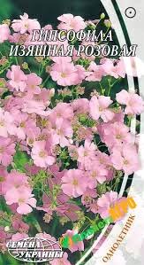 Семена Гипсофилы изящной, розовой 0.5 г, Семена Украины