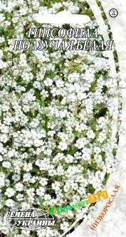 Семена цветов Гипсофилы ползучей белой (Семена)