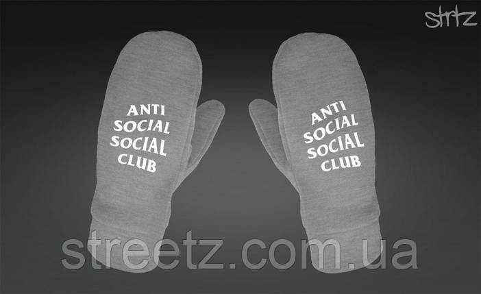 Варежки Anti Social Social Club ASSC Fleece Mittens серые, фото 2
