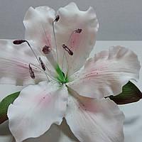 Лилия розовая тонированная ∅120
