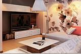 Тумба ТВ с выдвижными ящиками №1 (Континент) 2000х500х550мм, фото 5