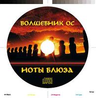 Репликация дисков CD 1000шт