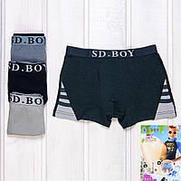 Трусы боксеры мальчиковые с полосками SD.Boy Y6032