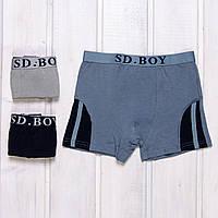 Трусы боксеры мальчиковые SD.Boy Y6002 (2 ед. в упаковке)