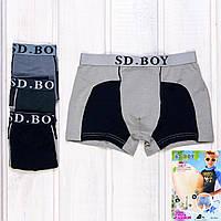 Трусы боксеры мальчиковые SD.Boy Y6037 (2 ед. в упаковке)