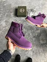 Ботинки женские Timberlаnd Violet 15392 фиолетовые