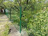Панельний огорожа зі зварної сітки, фото 2