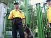 Физическая охрана с собаками в Днепропетровске