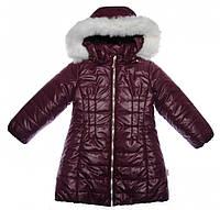 Зимнее пальто для девочки Garden Baby 100001-36/32 р.104 бордовый