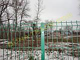Панельні забірні сітки для дачі, фото 4
