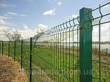 Оцинкованные заборные сетки, фото 3