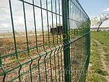 Оцинкованные заборные сетки, фото 4