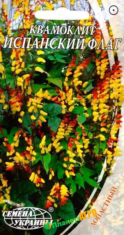 Семена цветов Квамоклит Испанский Флаг (Семена)