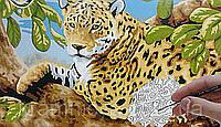 "Раскраска по номерам ""Леопард на дереве"", фото 1"