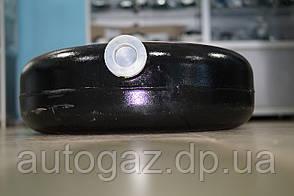 Балон газовий тороидальный АГТ-49/1 (зовн.фланець) 364.00.00, НЗГА ОАО (шт.), фото 2