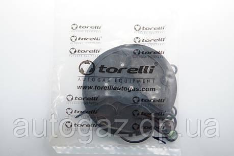 Ремкомплект Torelli 24 инж с фильтр, фото 2