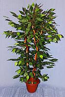Фикус  дерево искусственное
