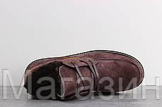 Зимние мужские ботинки UGG Australia David Beckham Lace Brown Угги Австралия Девид Бекхем коричневые, фото 3