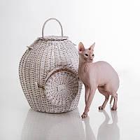 Willow Twig Cat Basket White - Плетеный (домик-переноска из лозы для кота)