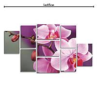 Модульная картина в гостину с рисунком Розовая орхидея