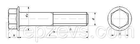 Схема габаритных размеров нержавеющего болта с фланцем DIN 6921