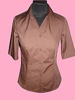 Женская блузка  рукав 1/2 коричневого цвета