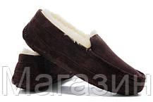 Мужские зимние мокасины UGG Australia Ascot Chocolate замшевые с мехом коричневые, фото 3