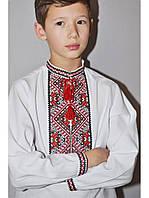 Вышиванка украинская для мальчика Багрянець