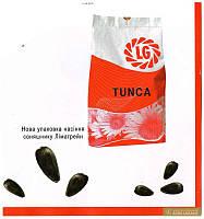 Семена подсолнечника ЛГ Тунка (Tunca)