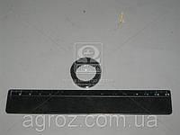Кольцо защитное БЫЧОК Д 245 (пр-во Россия) 240-1111036-Б