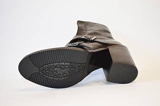 Женские кожаные ботинки Molly Bessa 631, фото 3