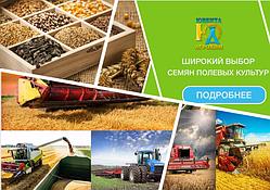 """Приглашение на региональную выставку """"Золотая осень - 2017"""""""